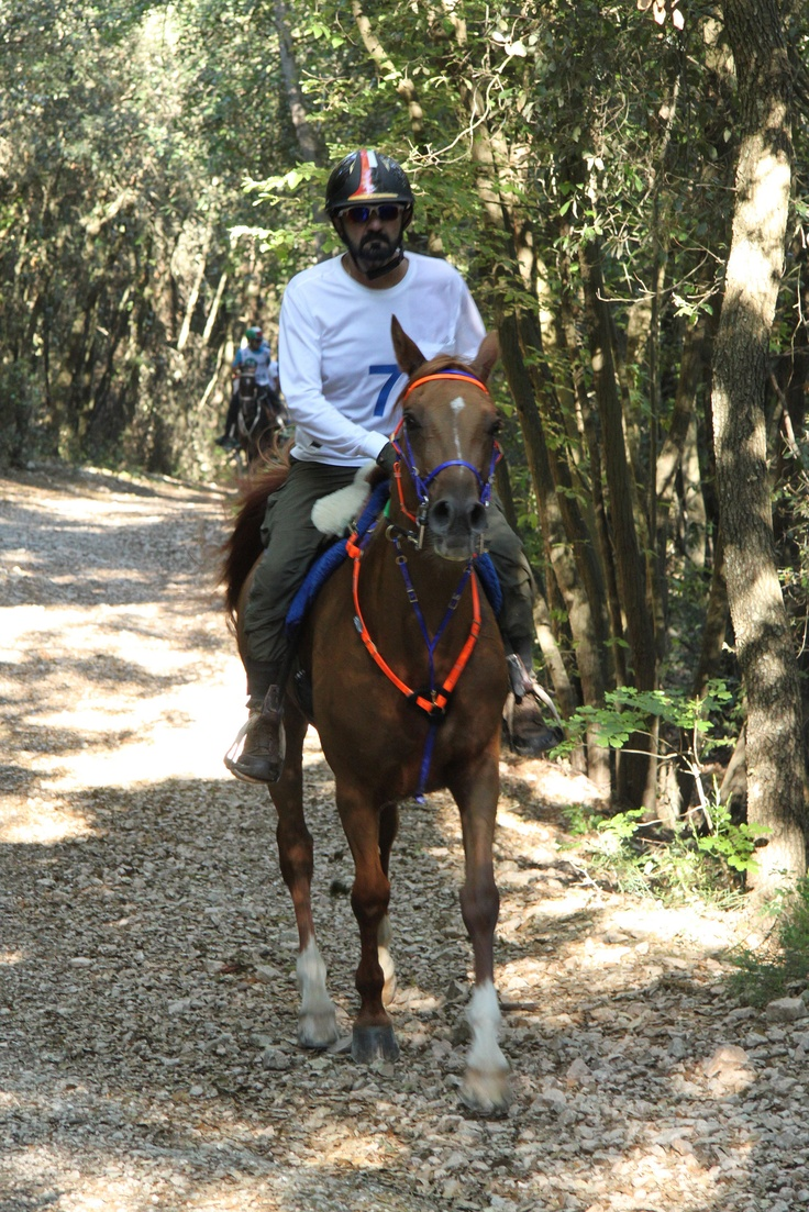 His Highness Sheikh Mohammed bin Rashid Al Maktoum Monte Conero (Marche)