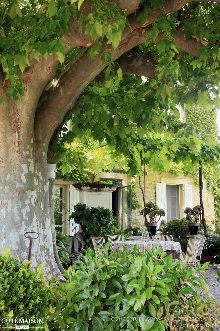 Les 25 meilleures id es de la cat gorie rideaux de for Decoration jardin campagne