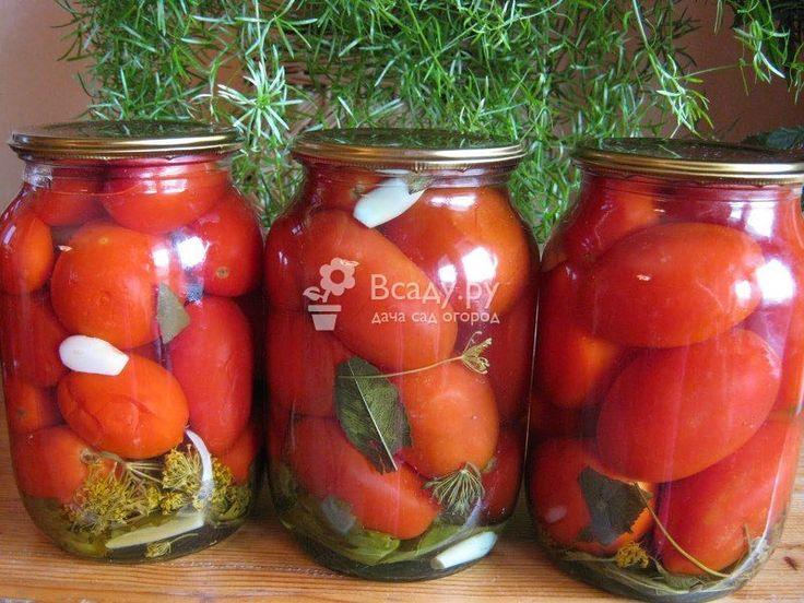 Консервирование помидоров без стерилизации