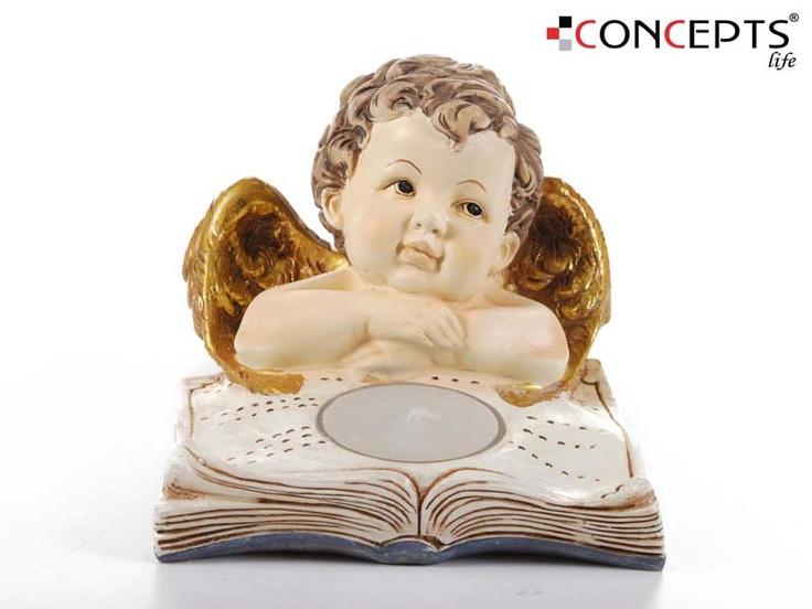 www.ConceptsLife.com
