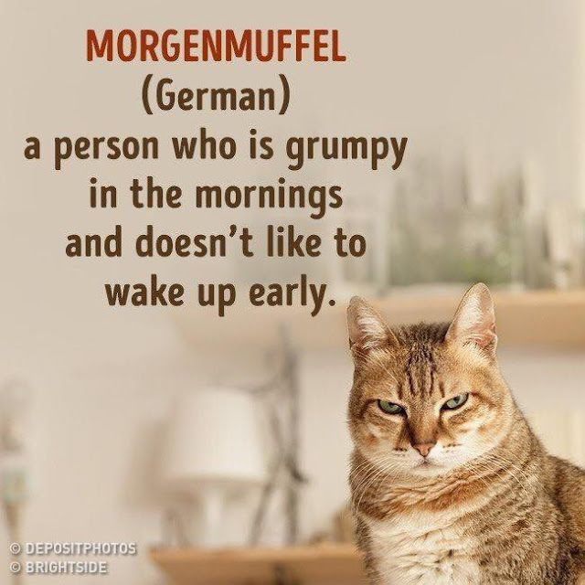 Linda Mooney S Other Worlds Of Romance Not In The English Language Morgenmuffel How To Wake Up Early Words Morning Humor