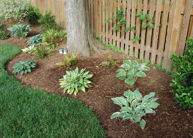 Landscaping With Rocks Under Trees : Best ideas about landscape around trees on landscaping front yard