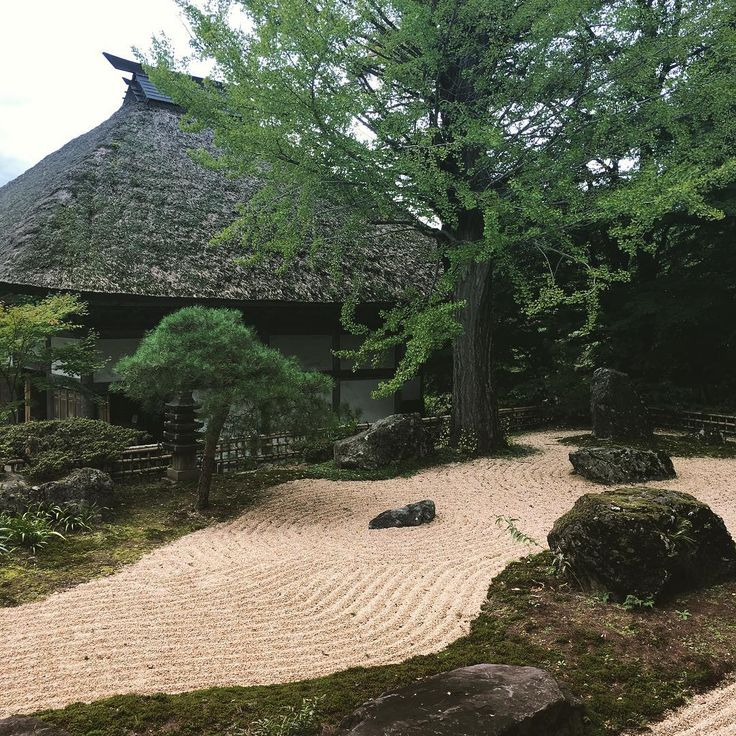#japan  #temple #zen #karesansui  #photo