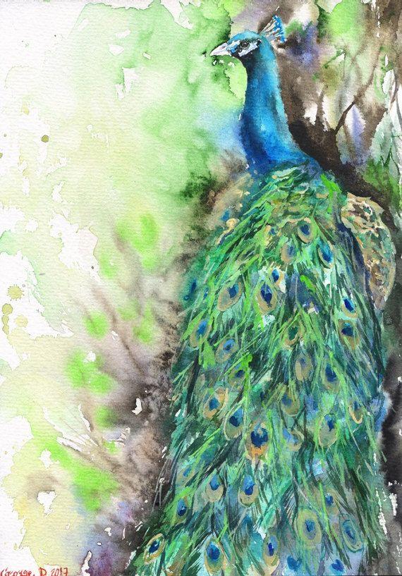 Peacock watercolor Print of the Original painting Cute  Art