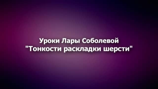 """Школа войлока - """"Тонкости раскладки шерсти"""" on Vimeo"""