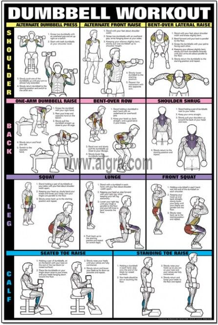 25 Best Ideas About Shoulder Dumbbell Workout On Weights Dumbbells Gym And Arm Lift