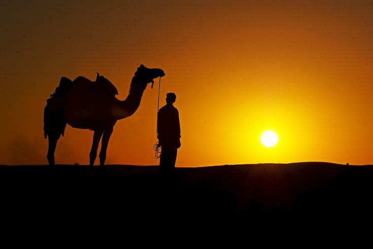 Rajasthan Tour Packages- Rajasthan tour packages with beautiful sightseeing and well planned itinerary find the tour and travel package with low budget. visit us.