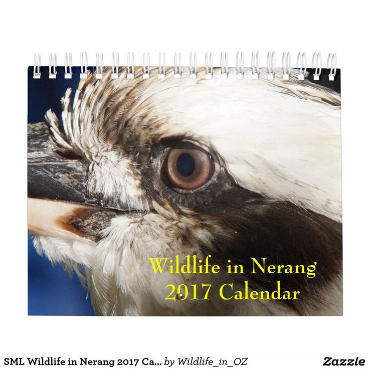 SML Wildlife in Nerang 2017 Calendar - Click on photo to view item then click on item to see how to purchase that item. #wildlife #koalabear #calendar #zazzle