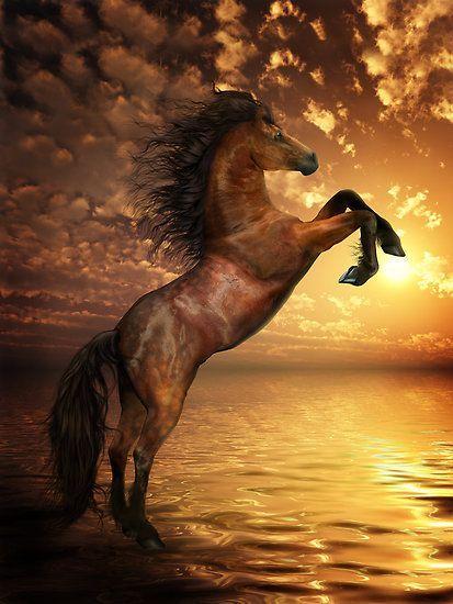 Freedom - Rearing Horse Artwork by Shanina Conway