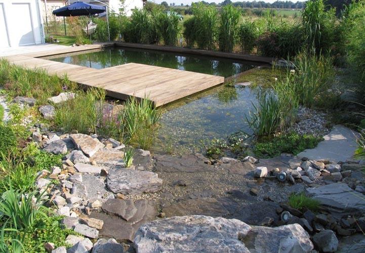 Schwimmteich in Berlin Schwimmteich, Berlin und Natur - kunstfelsen selber machen