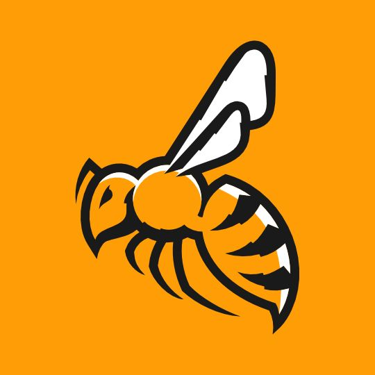 sports bee, wasp, hornet logos +. - Google Search