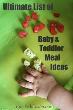 Ultimate list of baby and toddler meal ideas