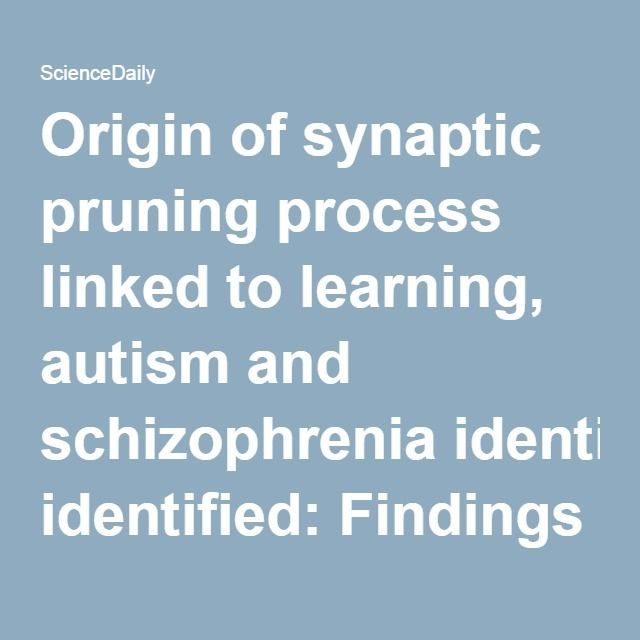 Origin of synaptic pruning process linked to learning, autism and schizophrenia identified: Findings may suggest new approaches to treatments -- ScienceDaily