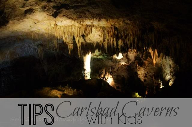 Tips for Visiting Carlsbad Caverns with Kids: includes half day and full day itinerary. #travel #NewMexico