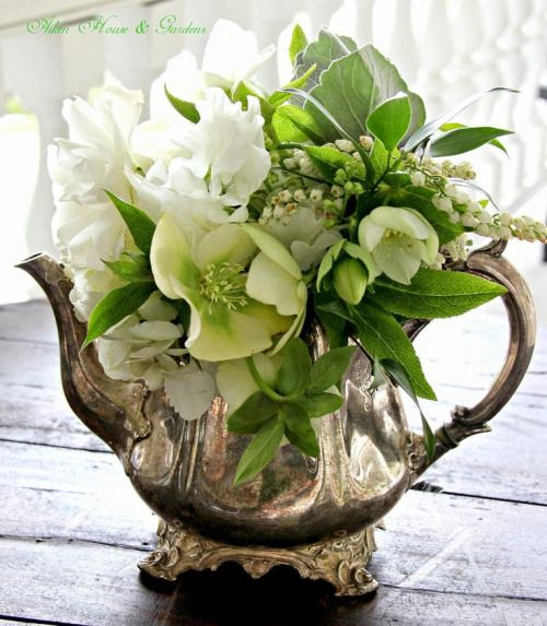 Floral Arrangement ~ white and green flowers in old tea pot