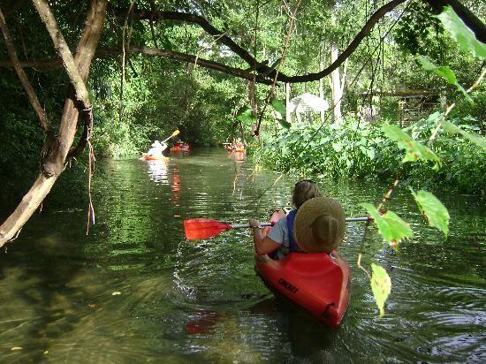 BeachnRiver Canoe and Kayak Rentals  18743 Keller Rd, Foley, AL 36535-After Instruction You Take Off From Beachn River Shallow Launch Toward Bon Secour River