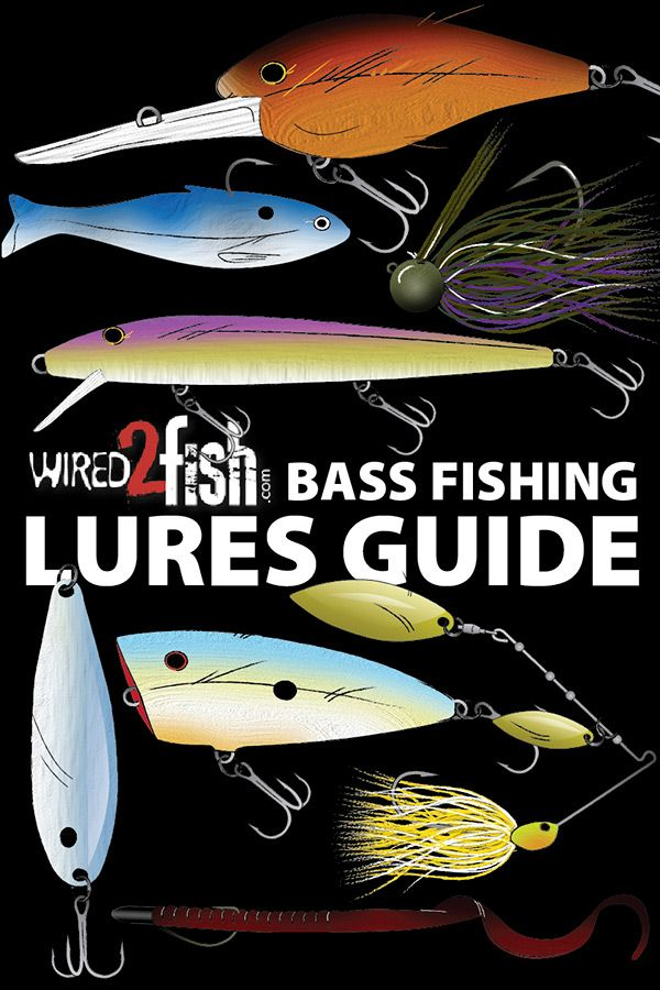 Wired2Fish presents it's Bass Fishing Lure Guide