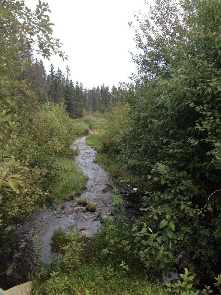 Creek between Dickinsfield  and Timberlea