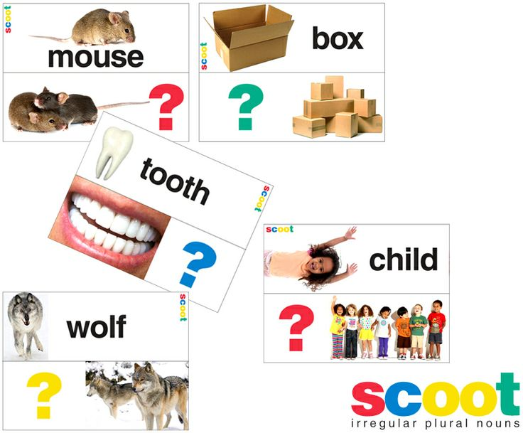 E is for Explore!: FREE irregular plural noun scoot game!
