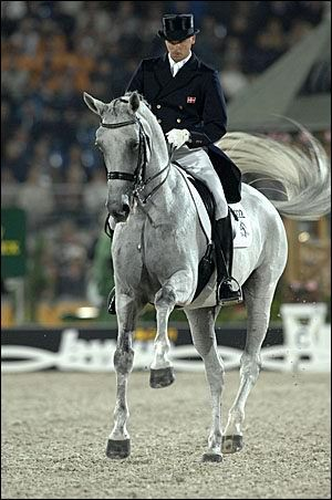 blue hors matine. this horse is amazing. she and her rider literally danced at worlds. I watch the video all the time
