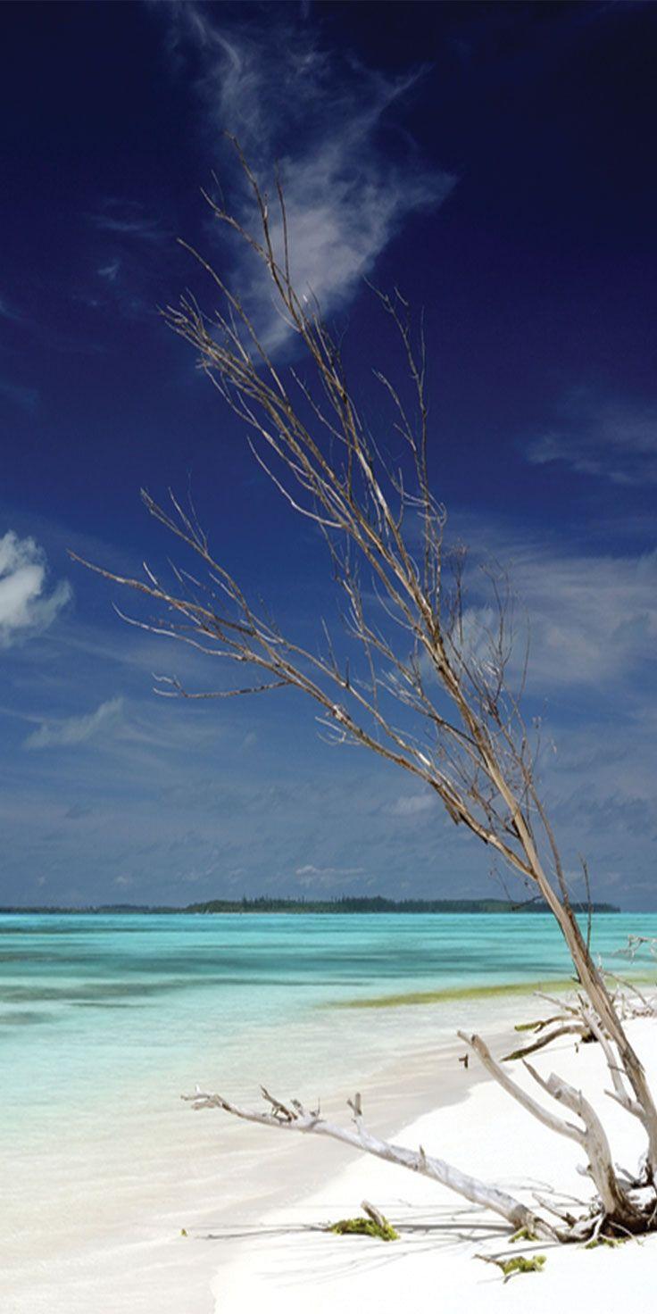 Crystal clear waters in Vanuatu