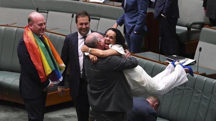 Australia, por fin, aprueba el matrimonio igualitario y se acumulan las peticiones en el registro civil - Oveja Rosa - Revista sobre familias y amor homosexual