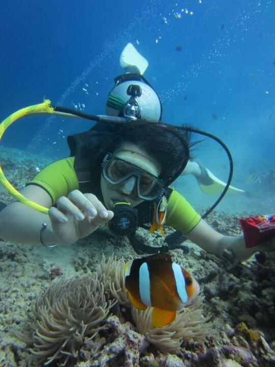 Finding Nemo at Bunaken, North Sulawesi