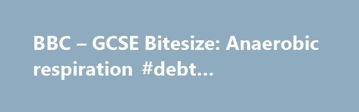 BBC – GCSE Bitesize: Anaerobic respiration #debt #management http://debt.nef2.com/bbc-gcse-bitesize-anaerobic-respiration-debt-management/  #oxygen debt # Anaerobic respiration Not enough oxygen may reach the muscles during exercise. When this happens, they use anaerobic respiration to obtain energy. Anaerobic respiration involves the incomplete breakdown of glucose. It releases around 5% of the energy released by aerobic respiration, per molecule of glucose glucose. A simple sugar made by…