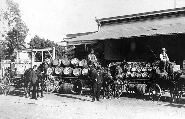 San Diego Brewing Company's horse-drawn beerwagons