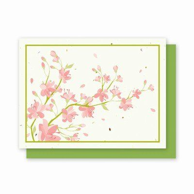 Cherry Blossom Landscape Plantable Greeting Cards - 4 Pack