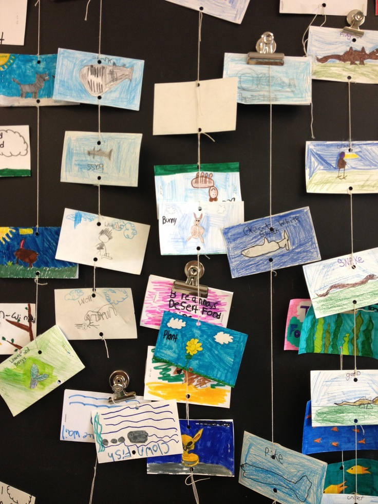 Food web food chain activity i saw this at a school i presented at
