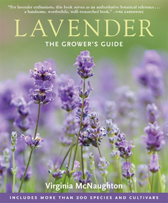 Lavender: The Grower's Guide from Timber Press