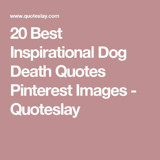 Best Pinterest Quotes Inspirational: 17 Best Dog Death Quotes On Pinterest