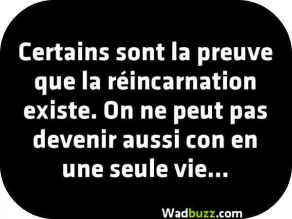 On ne peut pas devenir aussi con en une seule vie... ....réépinglé par Maurie Daboux .•*`*•. ❥