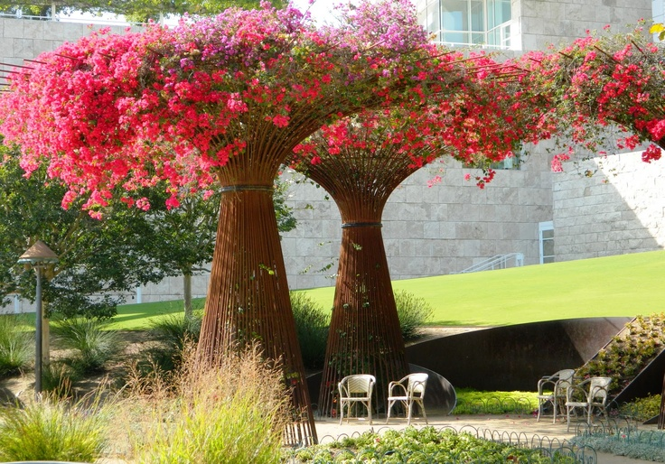 The getty center garden bougainvillea arbors a top 10 for Arboles para cierre de jardin
