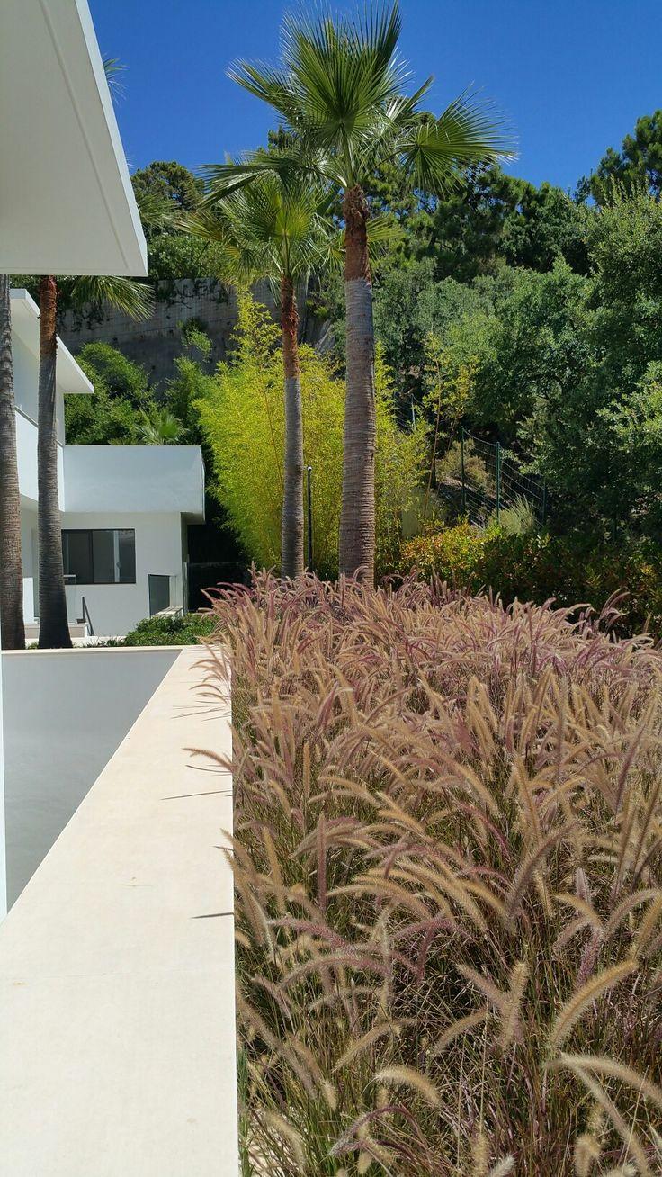 Garden by Fernando Perez Cano Paisajista + ark arquitectos.
