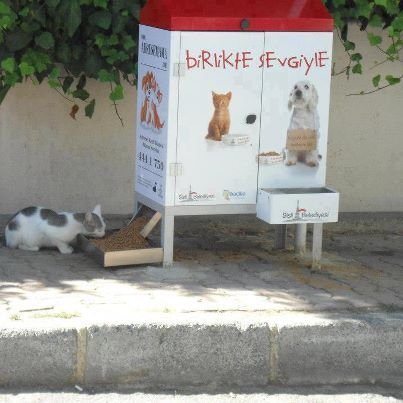 "Publicly sponsored stray cat & dog feeding station.... Wish we had these in NYC  The box says ""Together, With Love"""