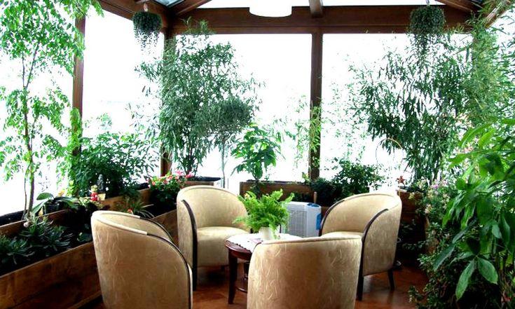 Zimowy ogród - zieleń przez cały rok http://www.kreocen.pl/poradnik/Zimowy-ogrod-zielen-przez-caly-rok-2_332.html