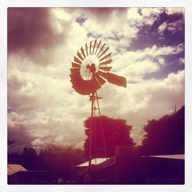 Windmill at Collingwood Children's Farm