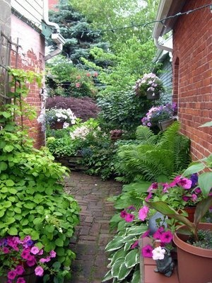 lovely brick walkway: Gardens Ideas, Summer Street, Summer Gardens, Ellie Alley, Side Yard, Side Gardens, Shades Plants, Gardens Walks, Small Gardens