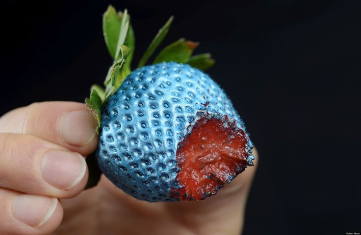 Edible Spray Paint Turns Food Into A Futuristic Feast