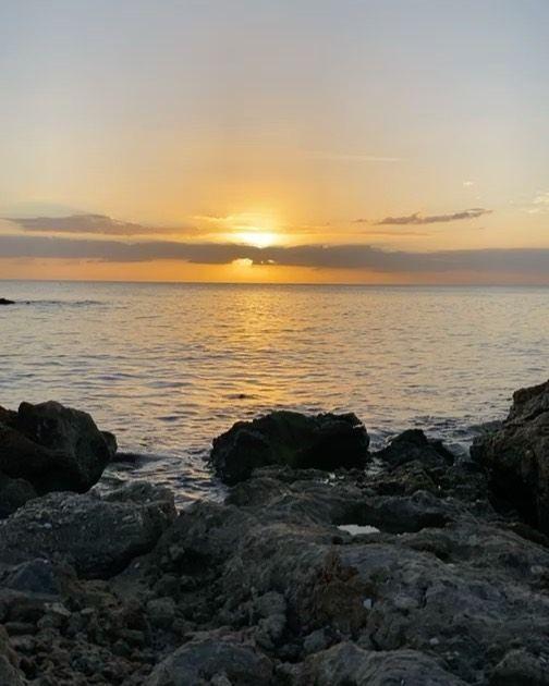 "Florida Shelling on Instagram: ""Sunset 🌅 . . . . . . #flshelling #floridashelling #swfl #venicebeach #venice #veniceflorida #gulfofmexico #sunset #caspersenbeach…"""