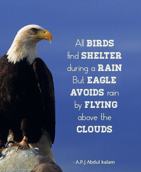 Flying Above Clouds - Tap to see more memorable quotes of A.P.J. Abdul Kalam! @mobile9