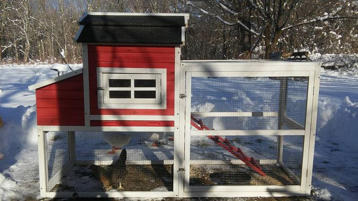 257 best images about backyard chickens on pinterest the for Red chicken coop
