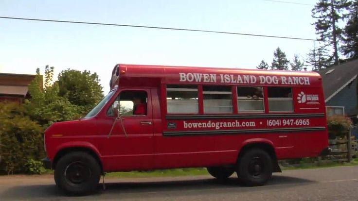 Bowen Island Dog Ranch Dream Video. Find out what its like for your dog to stay here, on beautiful Bowen Island in British Columbia!