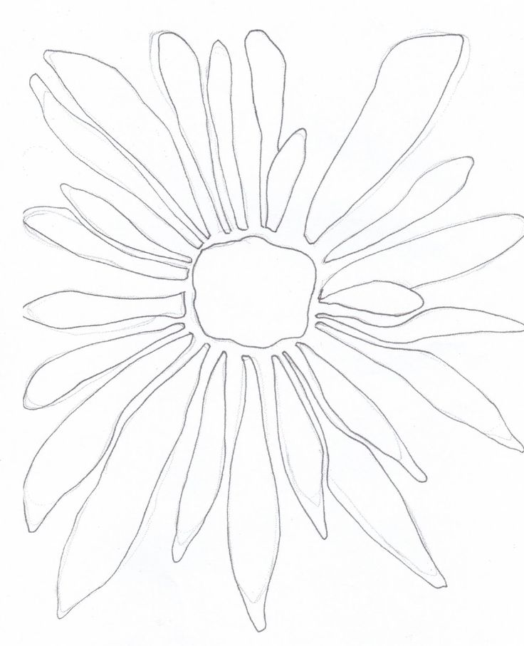 Simple Line Drawing Of Flower : Best ideas about simple flower drawing on pinterest