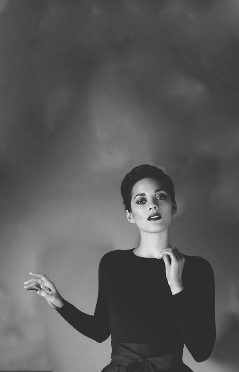 Marion Cotillard for Lady Dior                                                                                                                                                                                 More