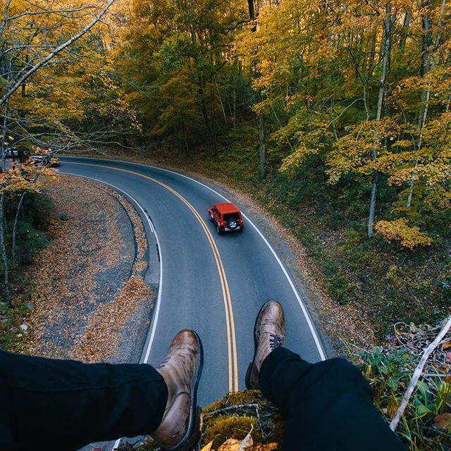 #Tree #Car #Road #Asphalt Road surface, Woodland, Asphalt concrete, Deciduous - Photo by Karl Shakur N. - Follow #extremegentleman for more pics like this!