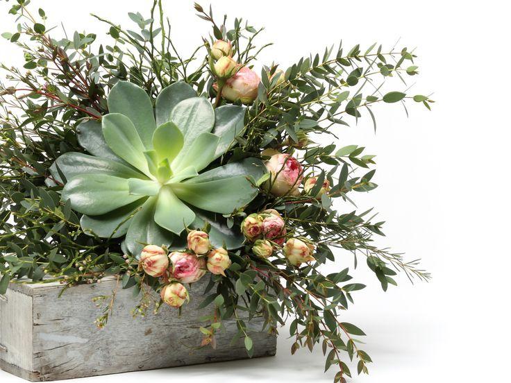 Lenyűgöző pozsgás virágcsokor    #flowers#bouquet#viragszoro#viragszoroviragkuldes#succulent#rose