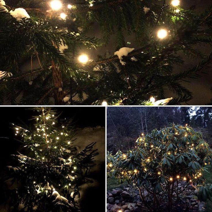 Kanske lite fel i tiden men här kommer ändå en bild på vår fina #julbelysning som fungerar tillsammans med vårt sortiment med #trädgårdsbelysning LED Garden Plug & Play. #smarthembilden by smarthem_se